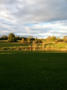 Hyder Fields